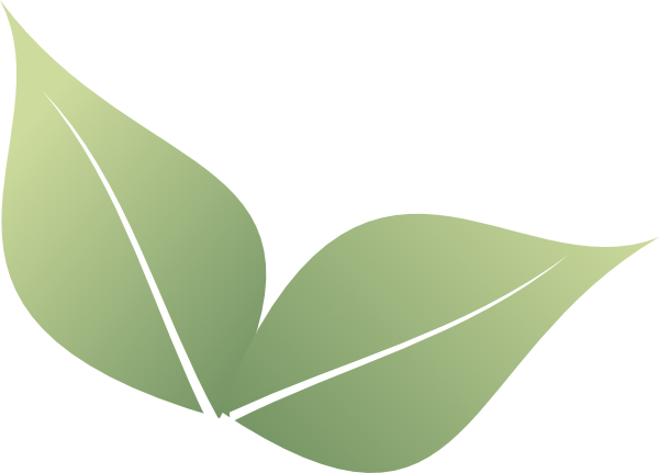 2 clipart leaf.