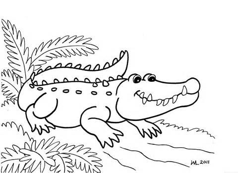 Alligator clipart coloring page.