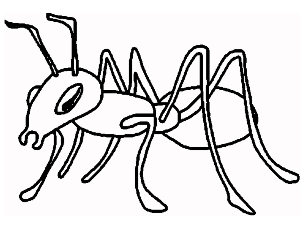 Ant clipart printable.