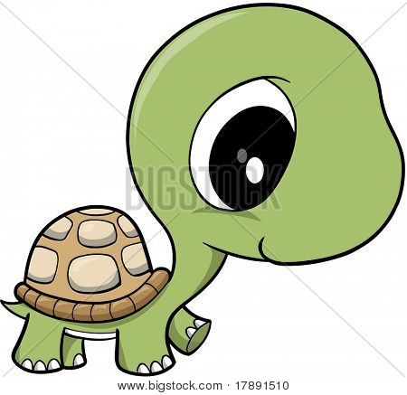 Clipart turtle baby.