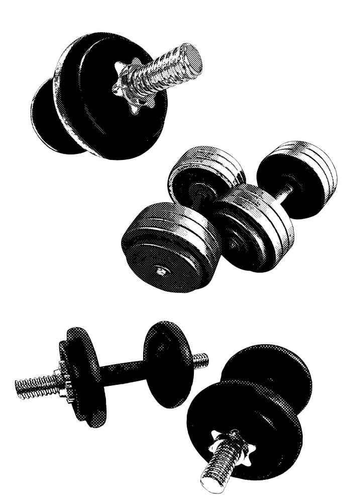 Barbell clipart gym equipment fitness.