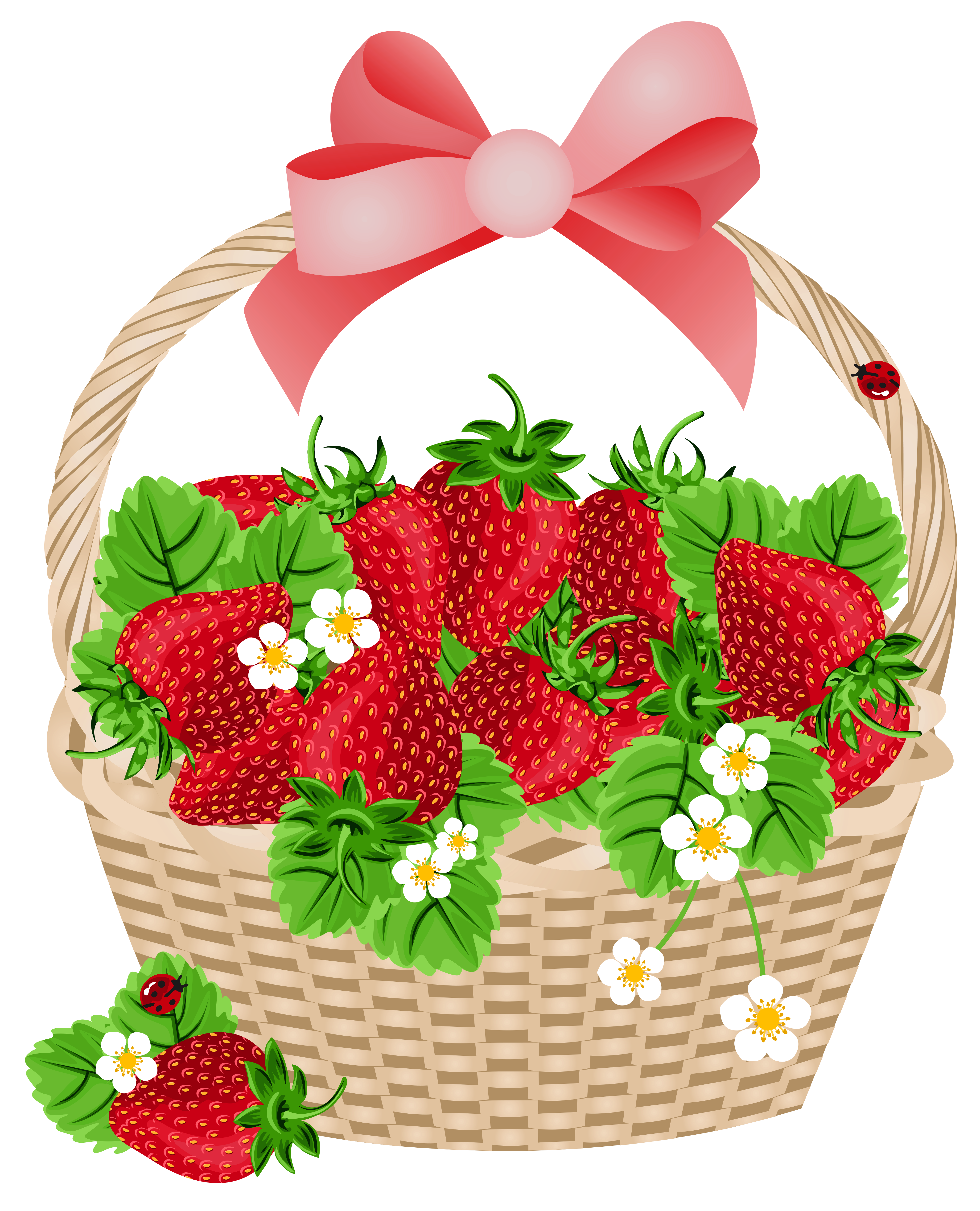 Basket clipart bow.