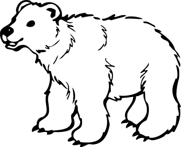 black bear clipart coloring