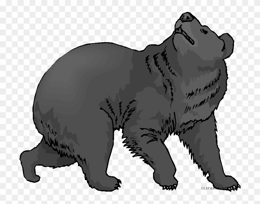 black bear clipart transparent