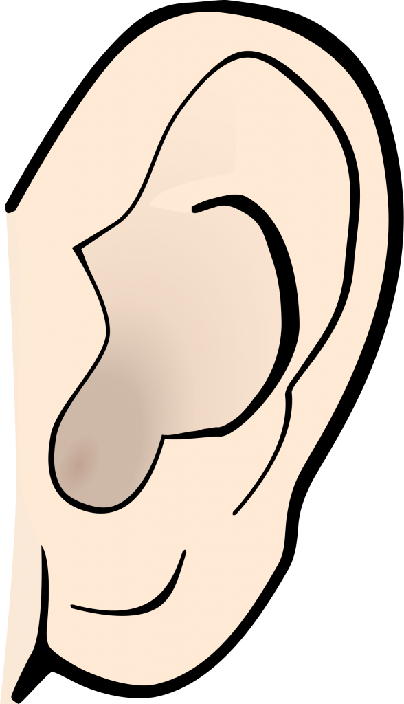 ear clipart simple