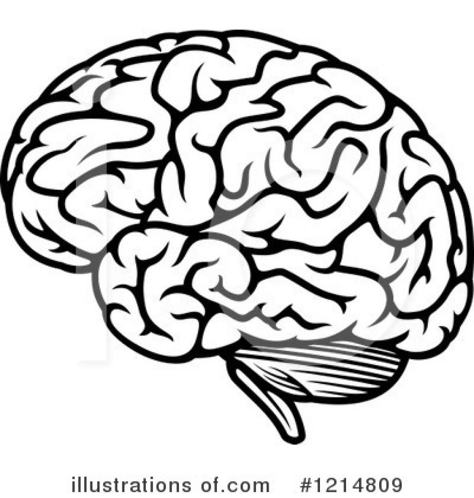 Brain clipart cartoon.