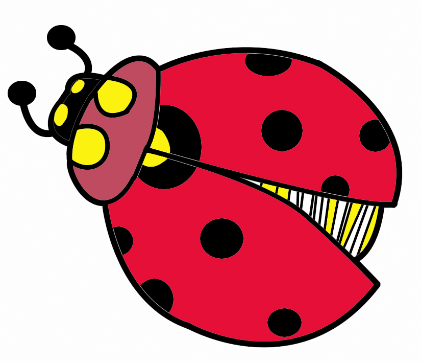 Bug clipart cliparts download.