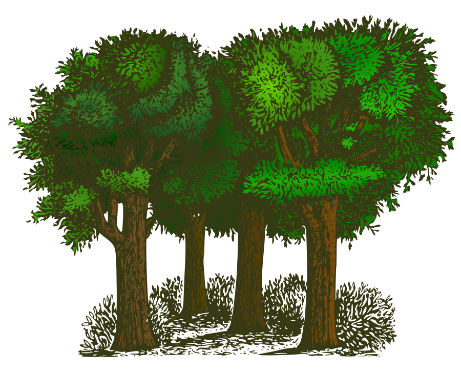 tree plan clipart cluster