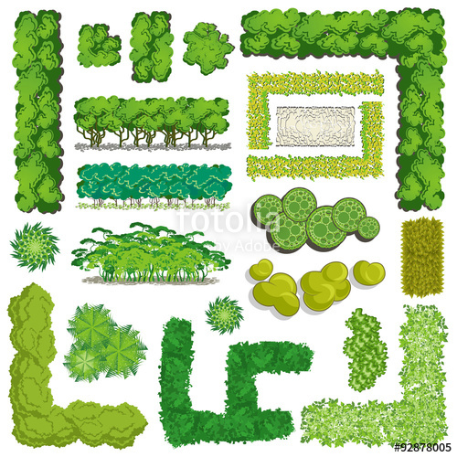 Bush clipart top view.