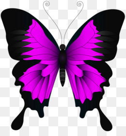 Butterflies clipart purple glitter.
