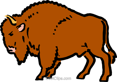 bison clipart easy