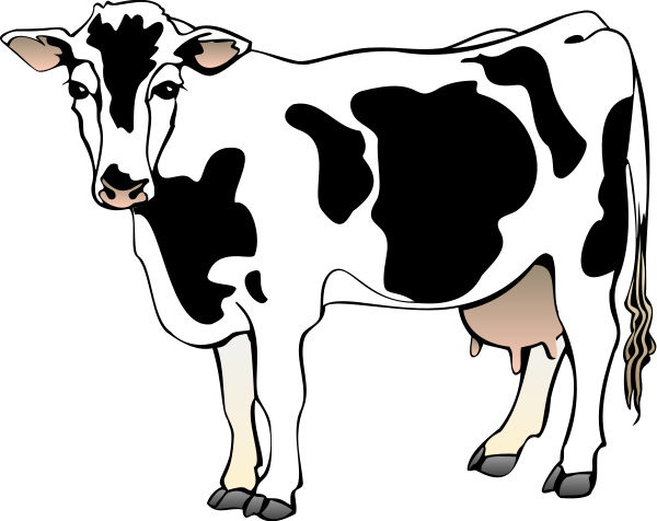 cow clipart eating