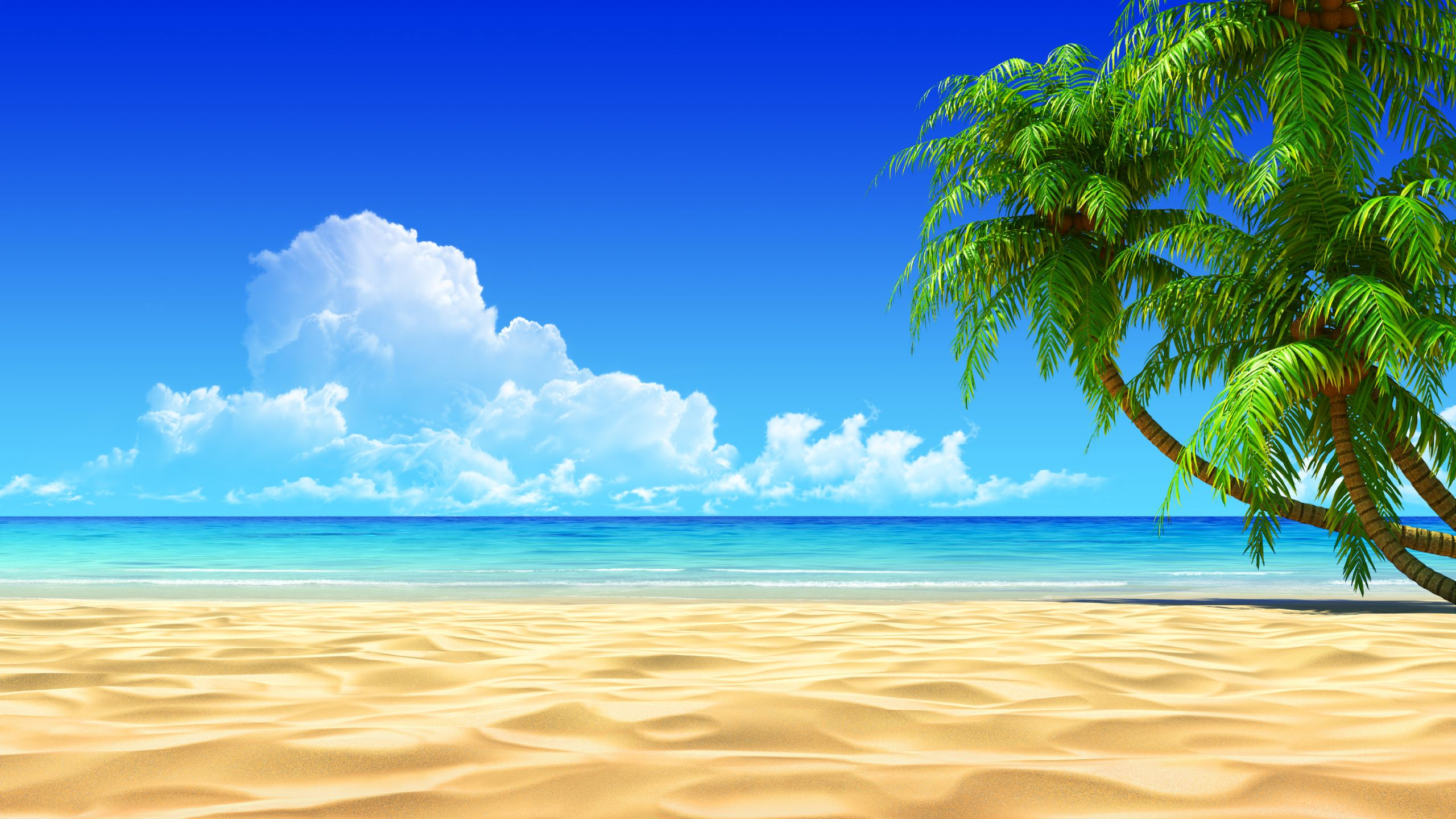Cancun clipart beach wallpaper.