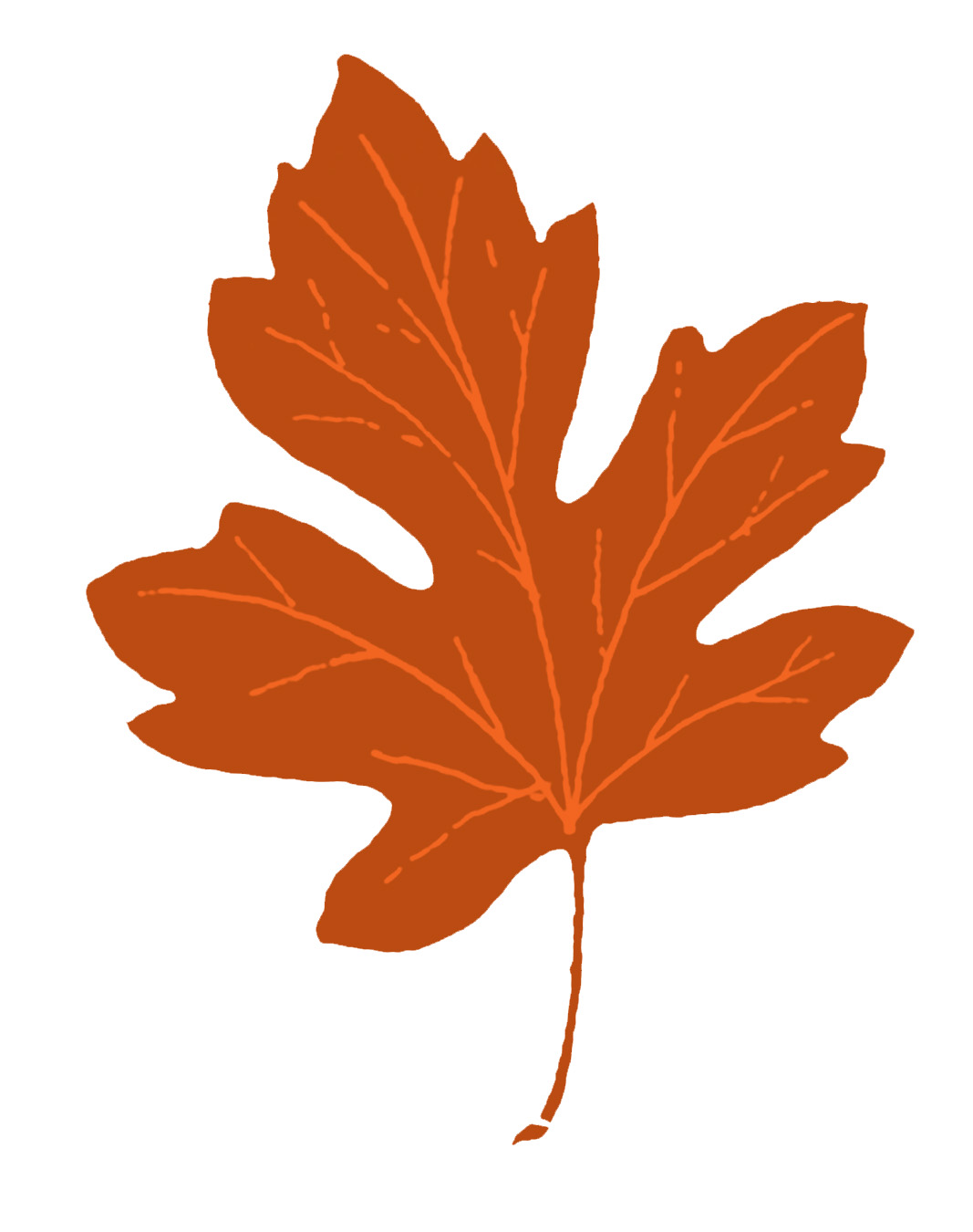 fall leaves clipart simple