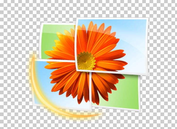 clipart viewer gallery