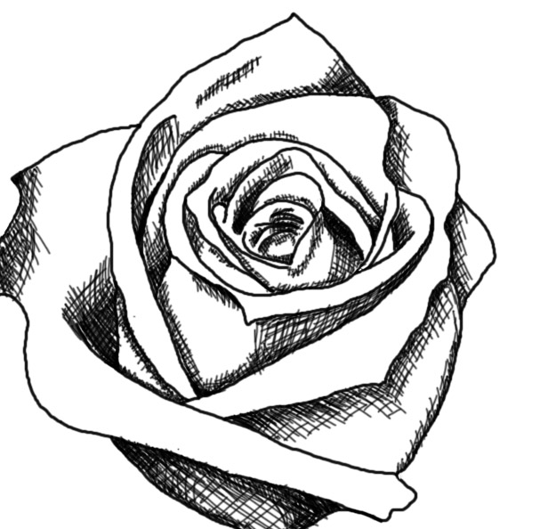 rose clipart black and white simple