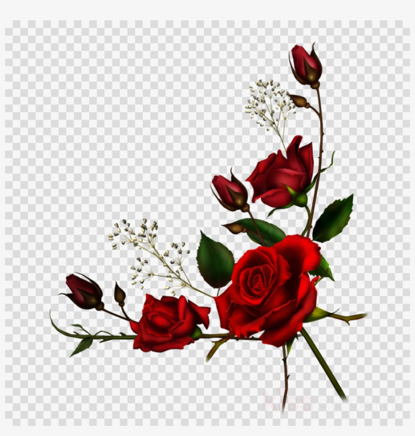Clipart roses png.