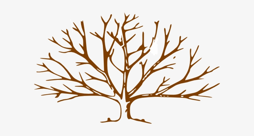 free tree clipart bare