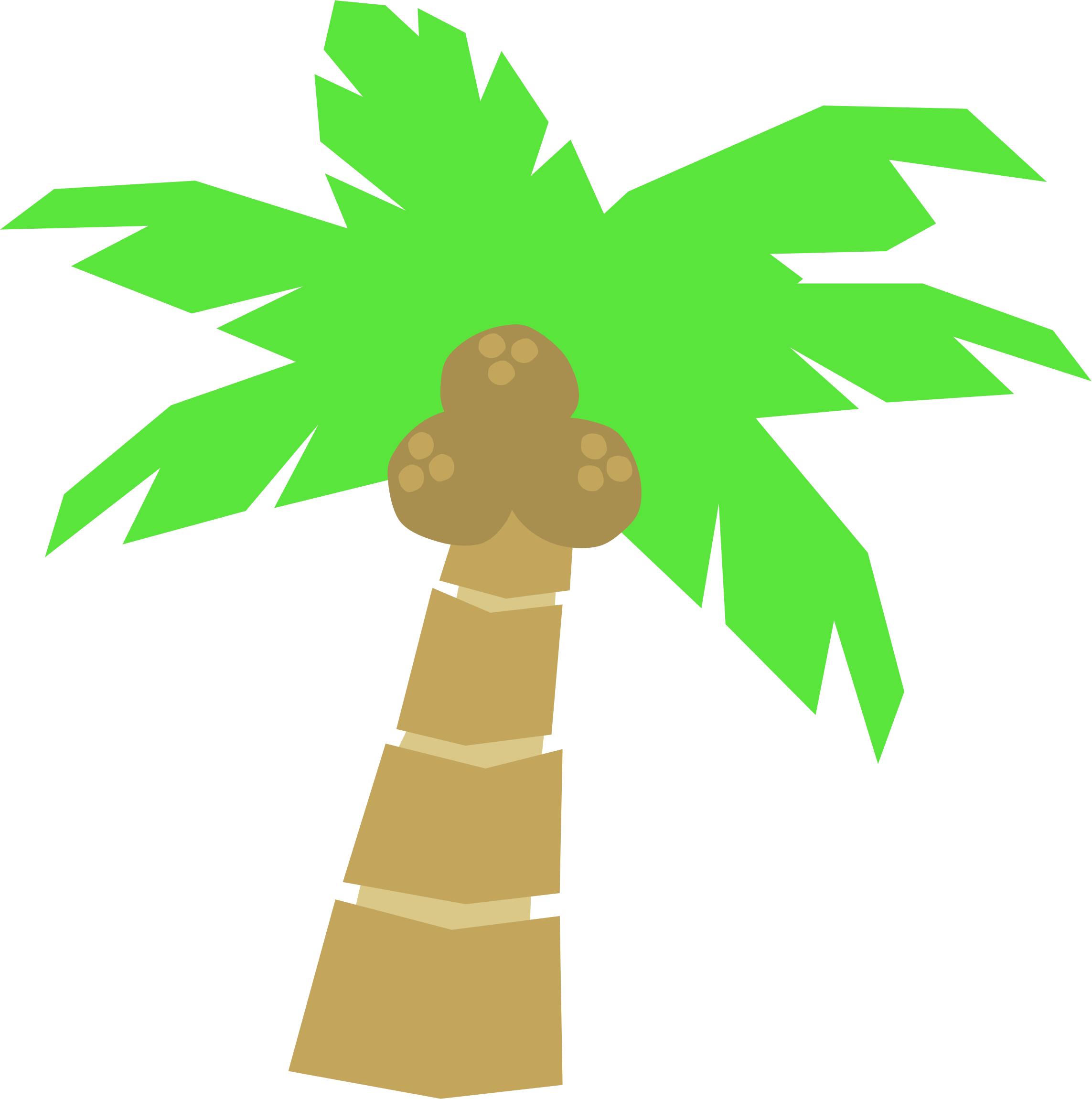 palm trees clipart vector