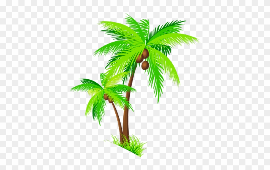 palm trees clipart realistic