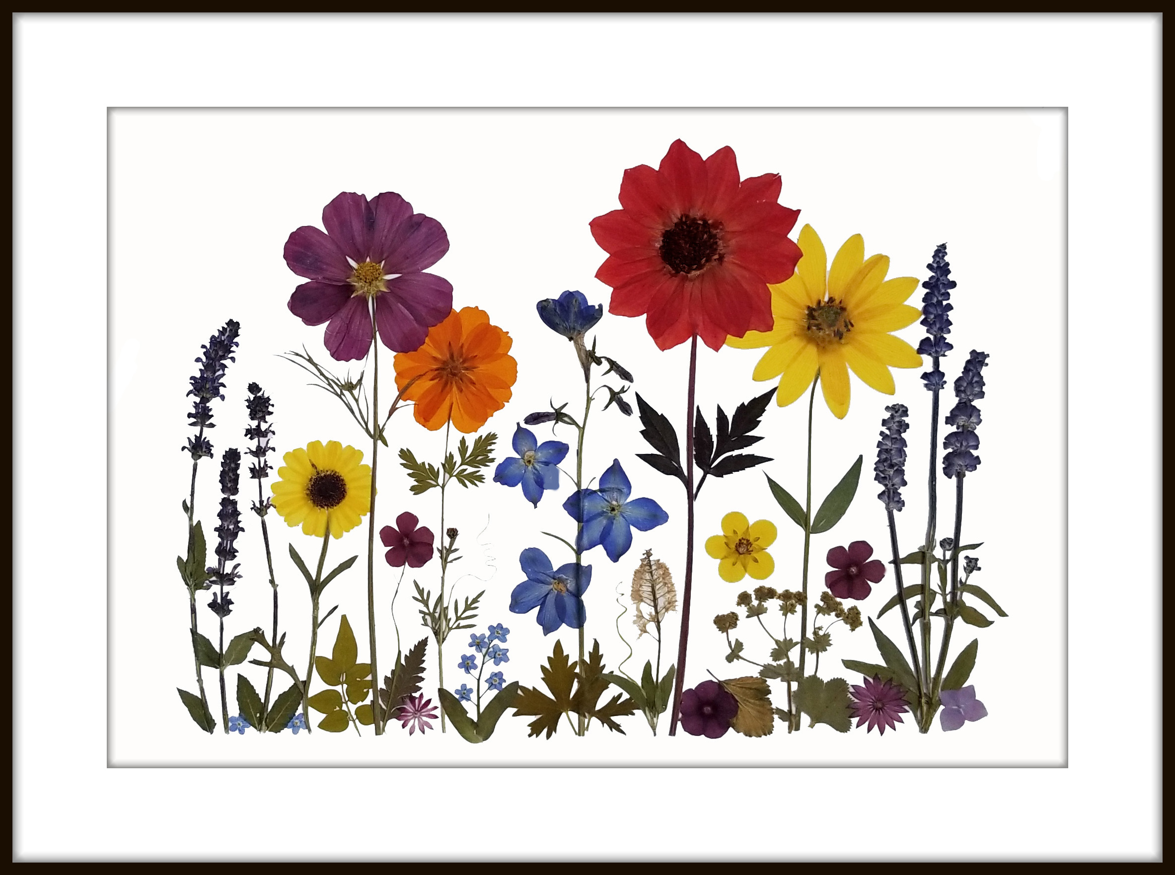 Comprised clipart spring flowers.