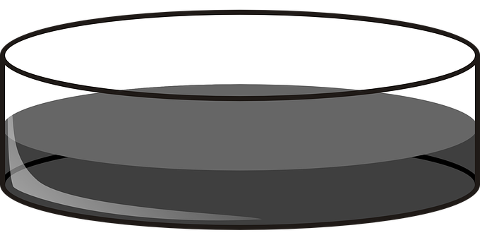 Dish clipart clear table.