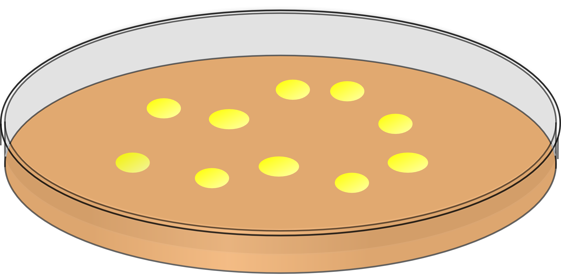 Dish clipart yellow plate.