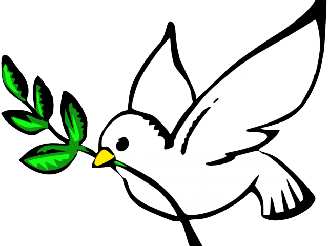 Dove clipart. Peace burung free on