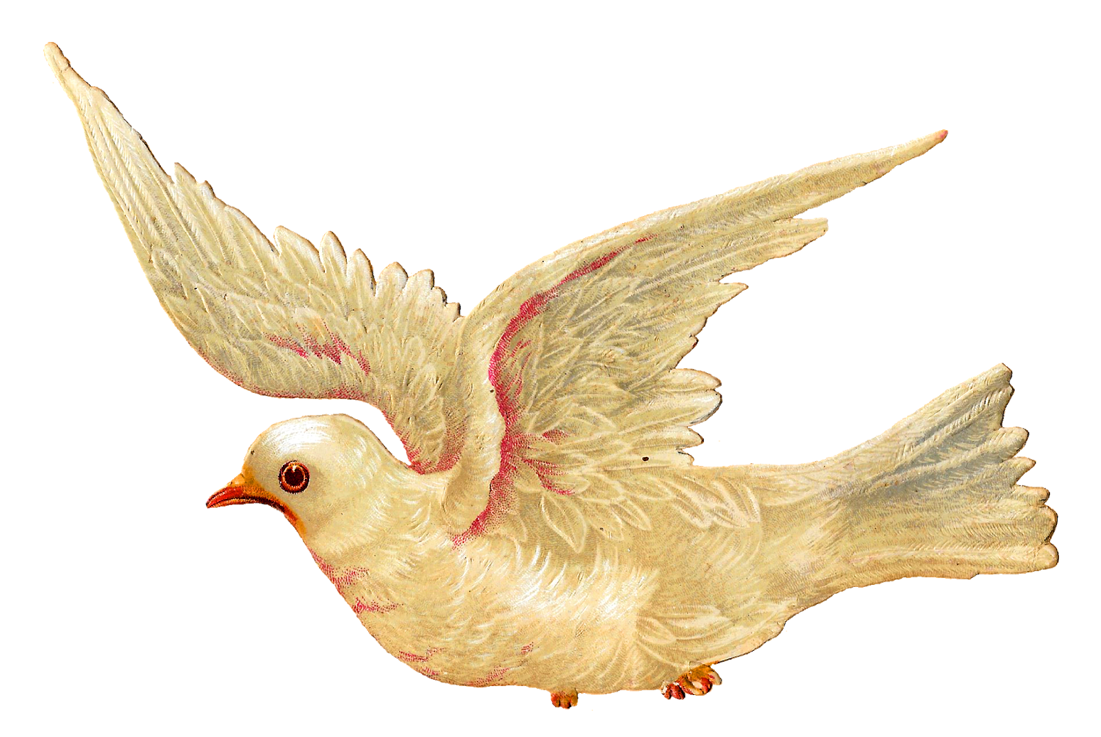 Dove clipart yellow.