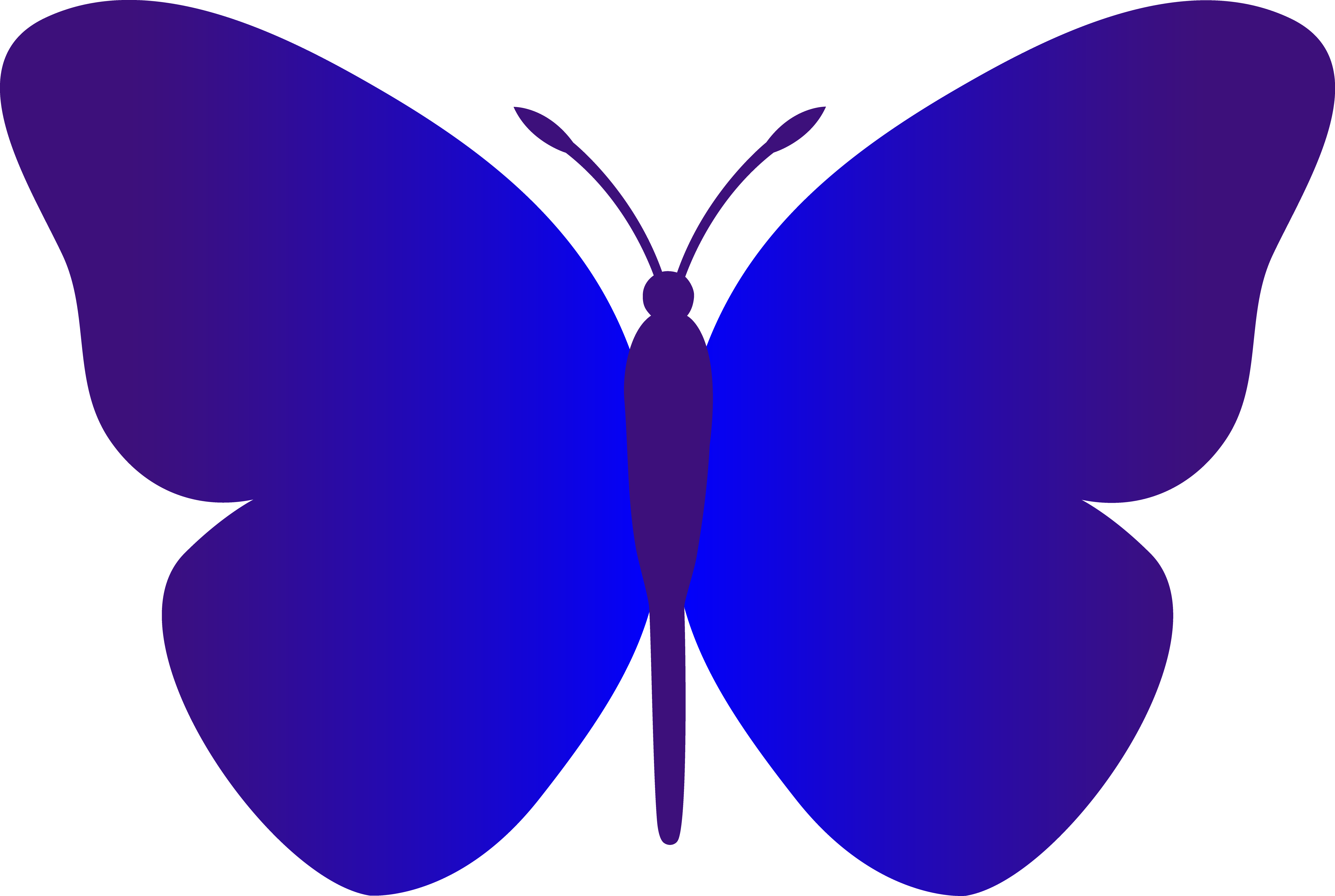 February clipart butterfly.