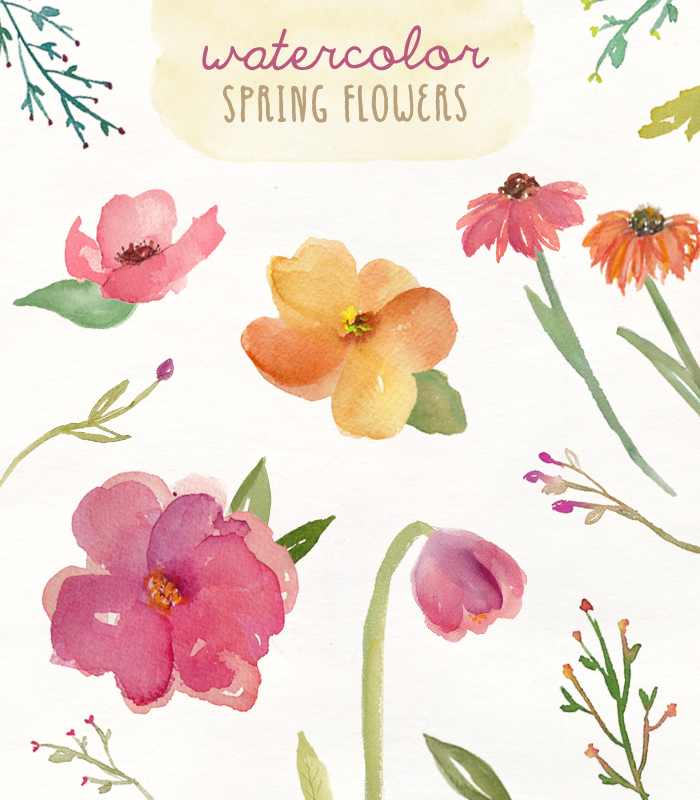 spring flower clipart watercolor