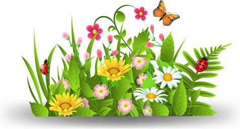 spring flower clipart vector