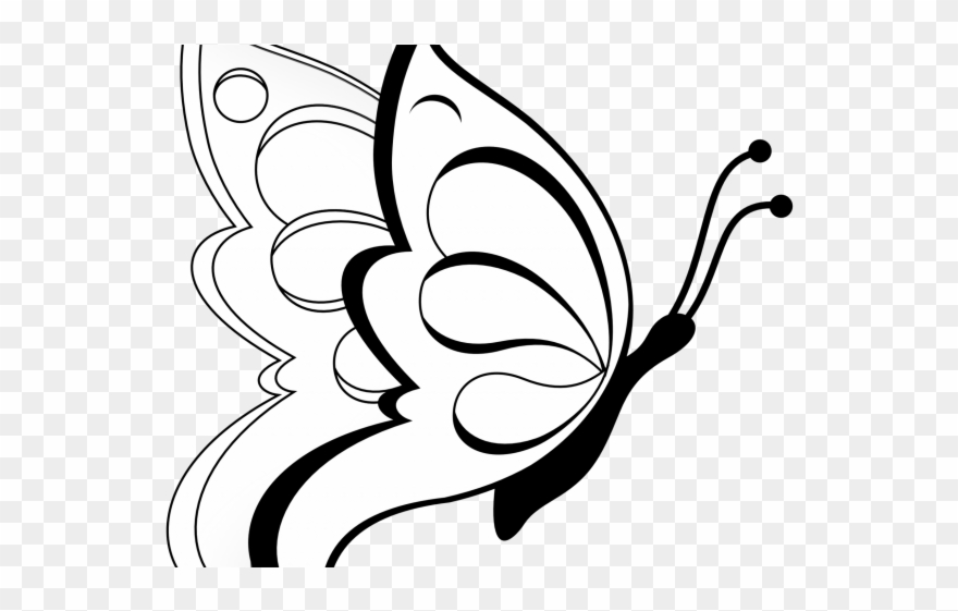 butterfly black and white clipart transparent