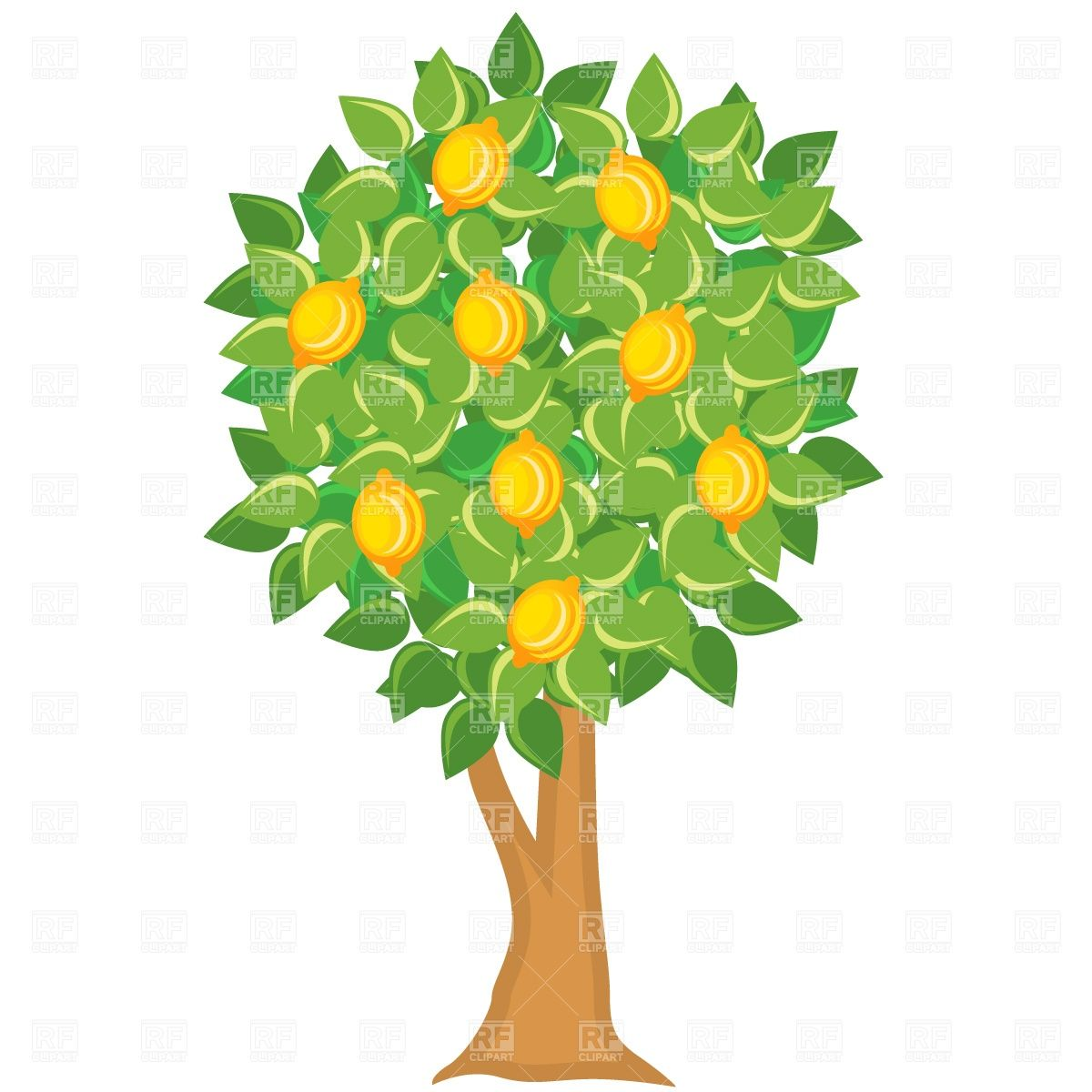 Tree clipart fruit.