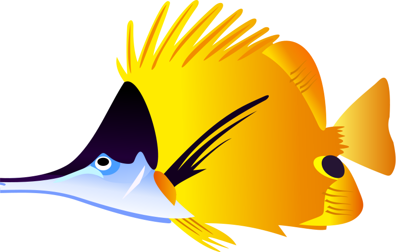 fish clipart tropical