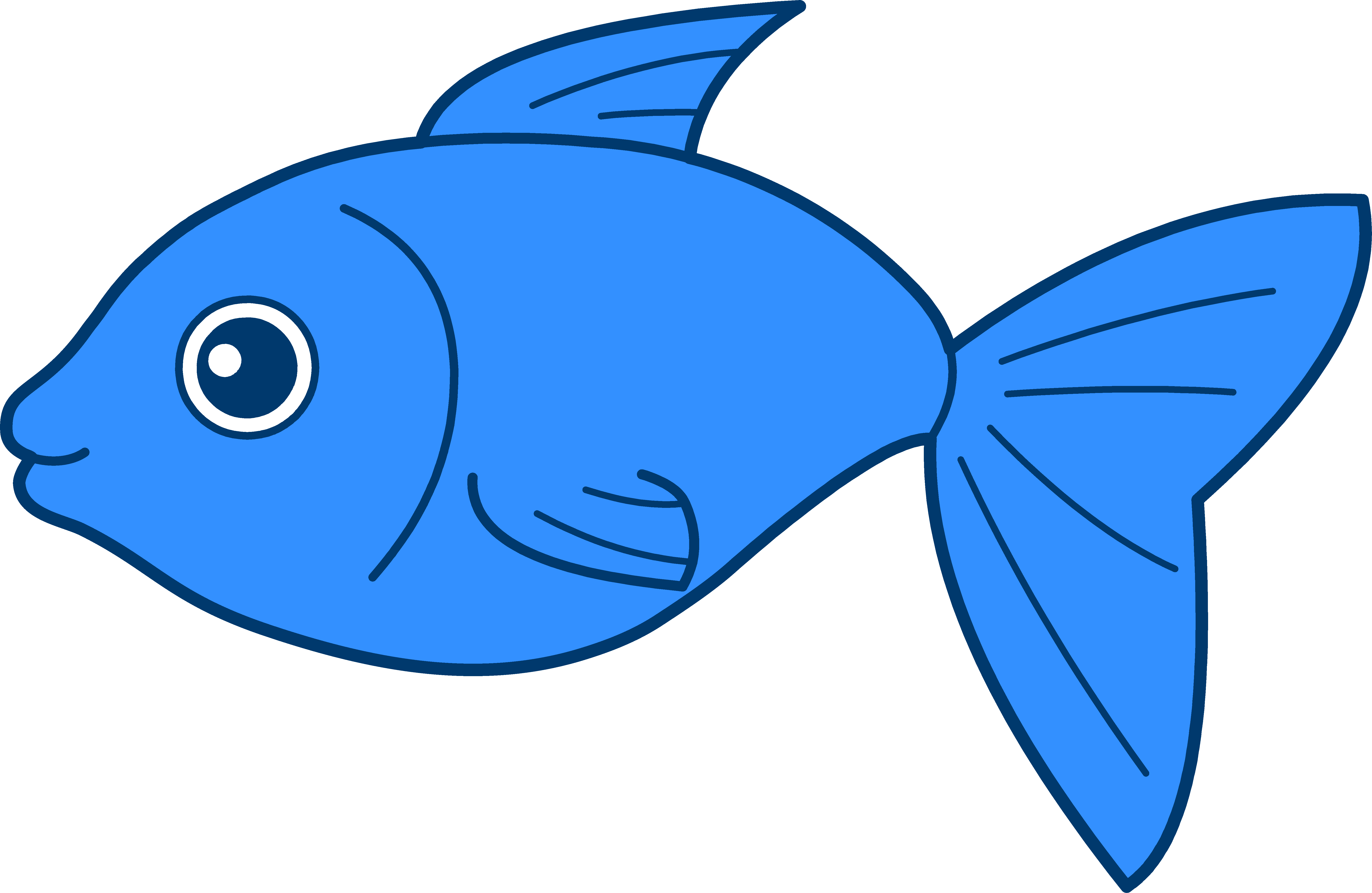 fish clipart colorful