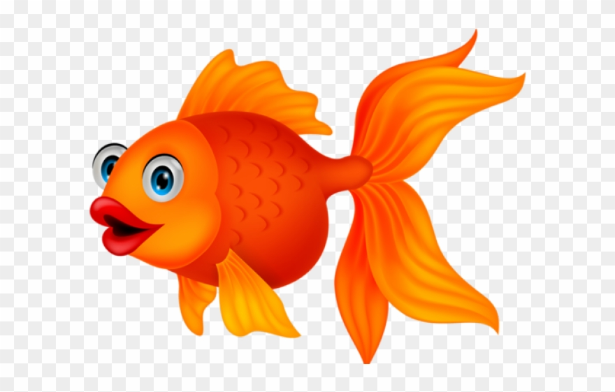 Fish clipart goldfish.