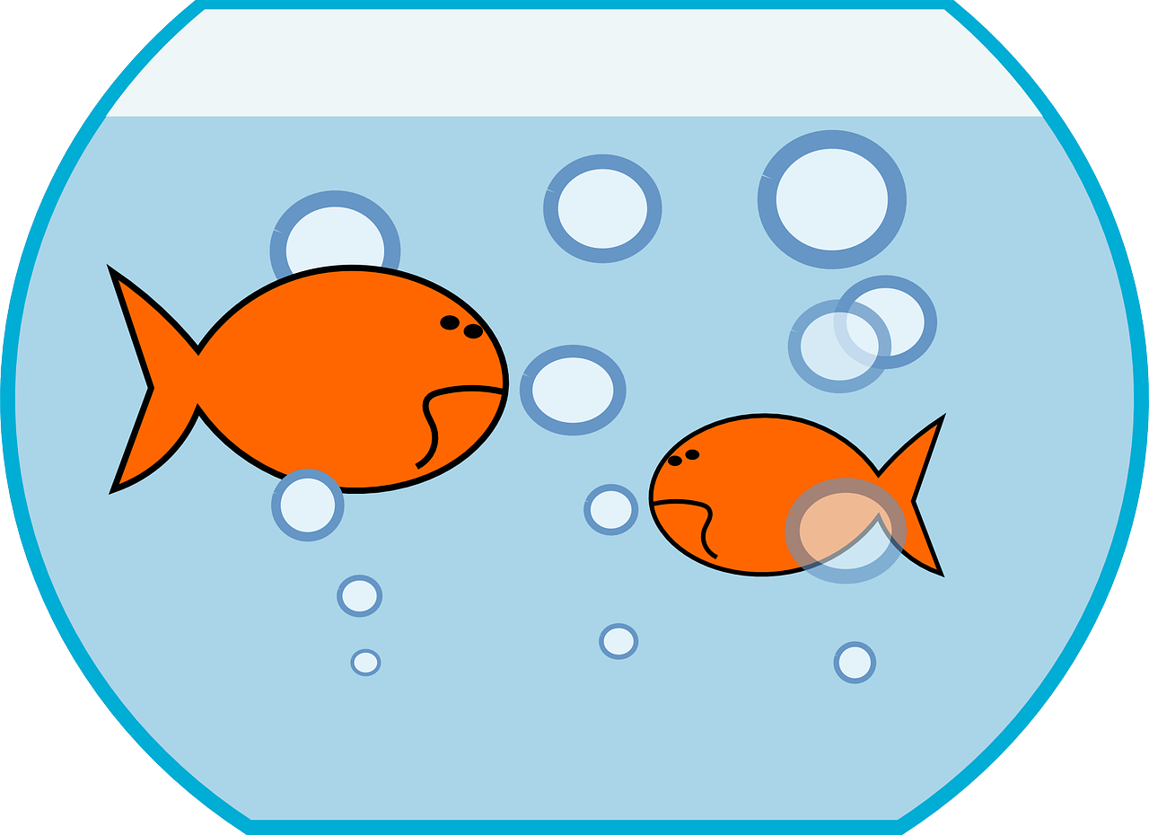kahlenstein clipart plaice