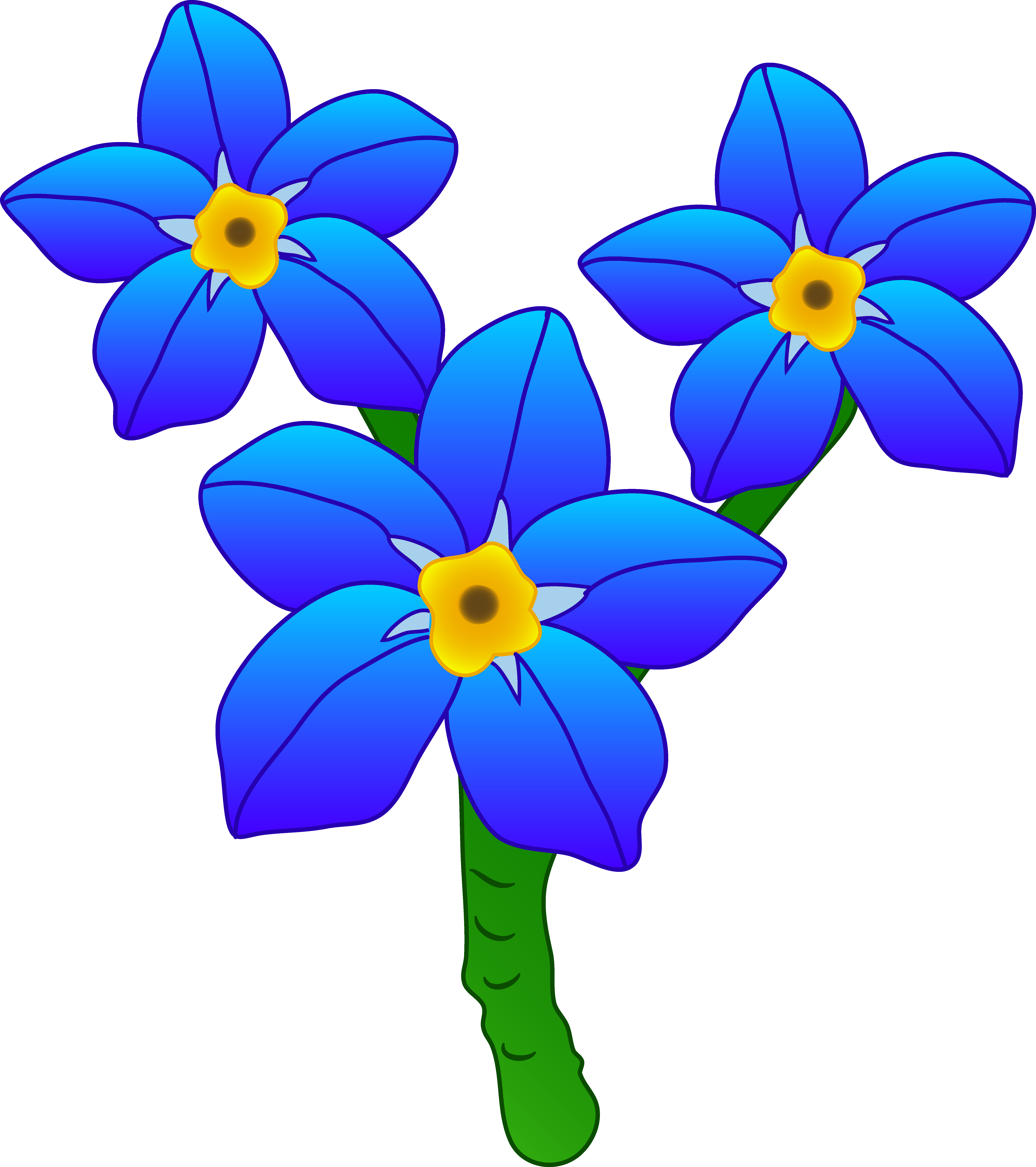 free clipart flowers forget me not