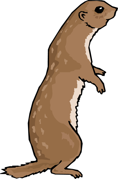 Otter clipart transparent background.