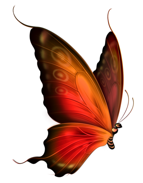 moth clipart red butterfly