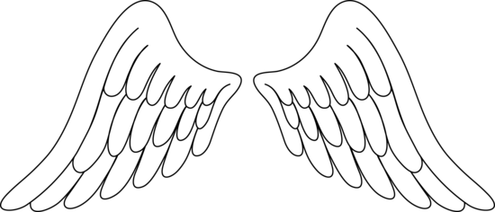 angel wings clipart vector