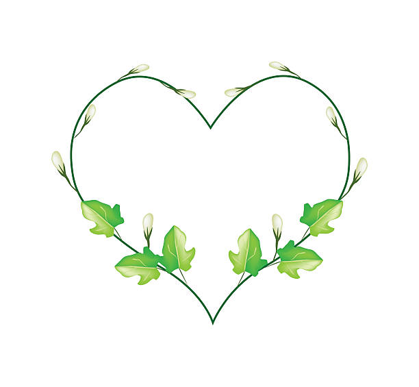Heart clipart leaf.