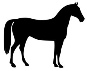 horse clipart black and white pony