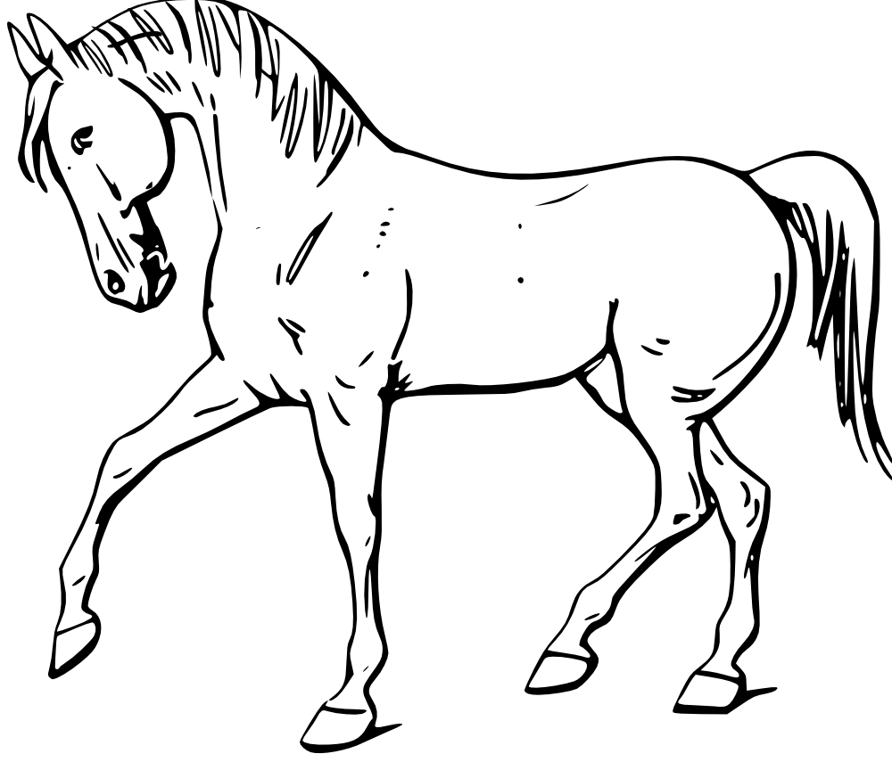 Horseshoe clipart horse drawing.