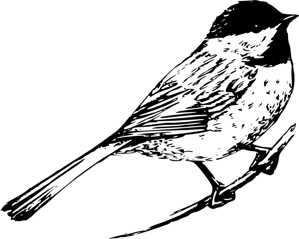free black and white clipart bird