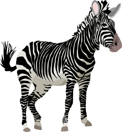 public domain clipart animal
