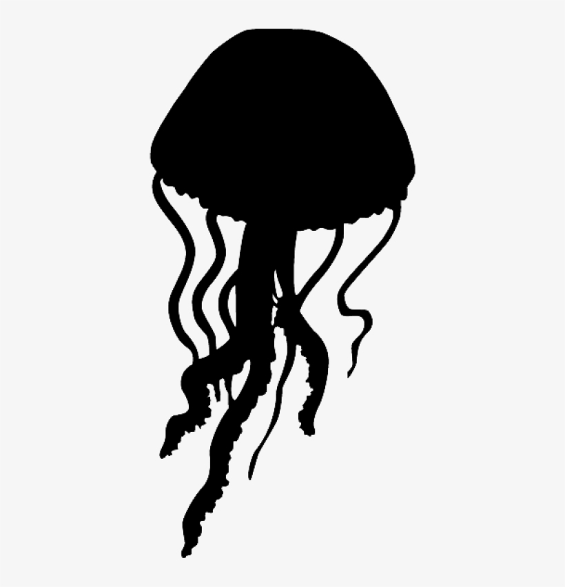 Jellyfish clipart photo download.
