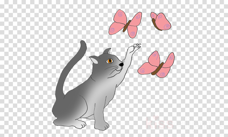 Cat clipart butterfly.