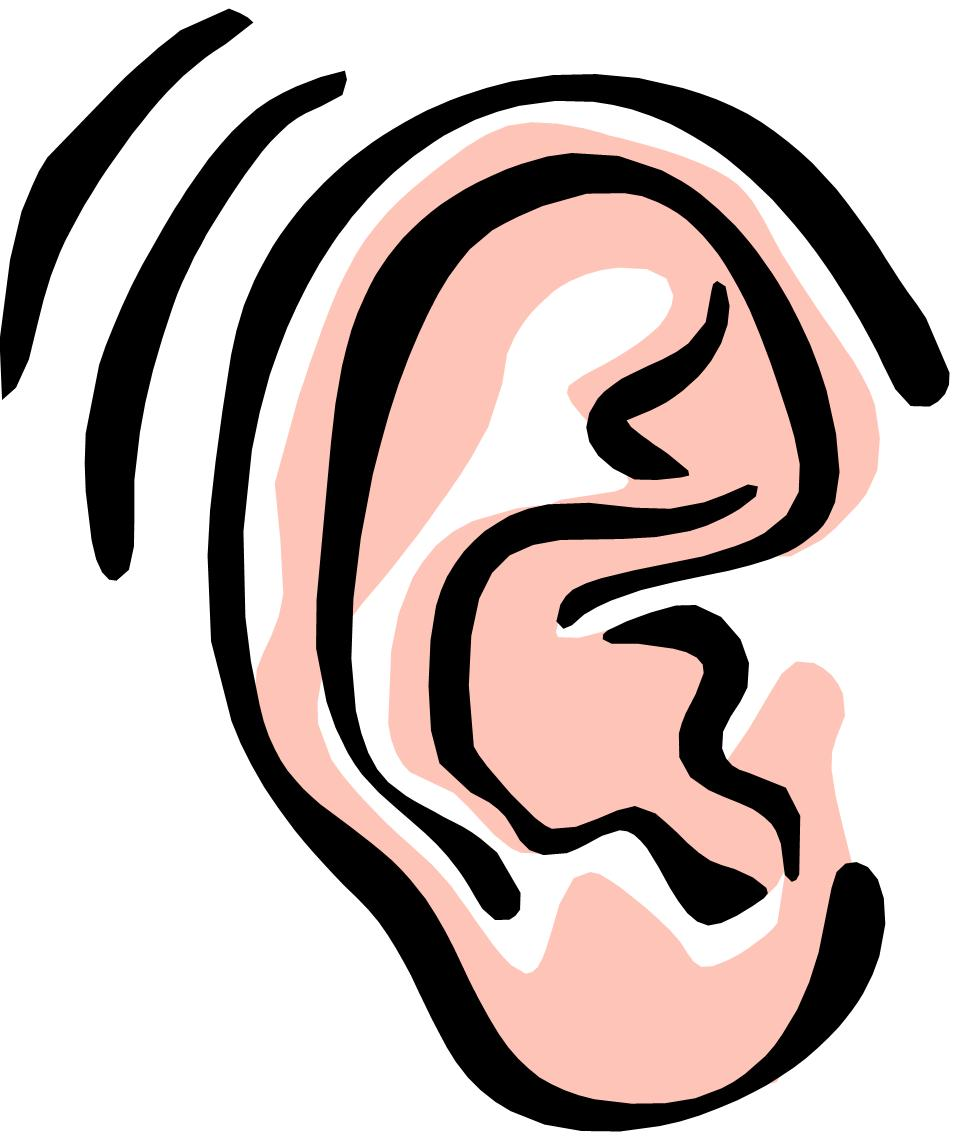 Listening ears clipart hearing.